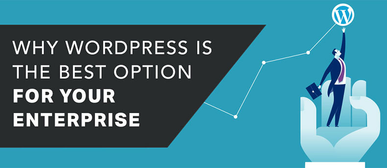 Why WordPress is the Best Option for Your Enterprise